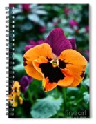 Pansy Power Spiral Notebook
