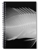 Panther Grouper X-ray Spiral Notebook