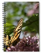 Papilio Glaucus   Eastern Tiger Swallowtail  Spiral Notebook