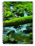 Paradise Of Mossy Logs And Slow Water   Spiral Notebook