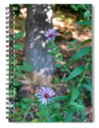 Paradise Springs Flowers 1 Spiral Notebook