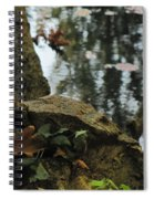 Paradise Springs Reflections Spiral Notebook