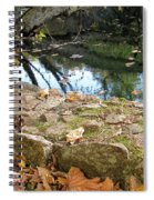 Paradise Springs Stone Wall Spiral Notebook