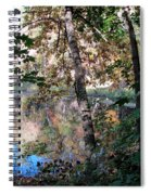 Paradise Springs Trees Spiral Notebook