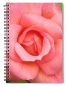 Paris Rose Spiral Notebook
