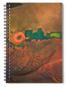 Parrotfish Scaridae Spiral Notebook