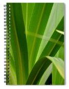 Particularly Green Spiral Notebook