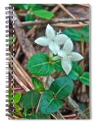 Partridge Berry Flower - Mitchella Repens Spiral Notebook