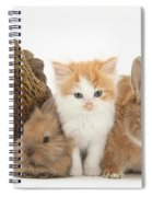 Partridge Pekin Bantam With Kitten Spiral Notebook
