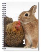 Partridge Pekin Bantam With Rabbit Spiral Notebook