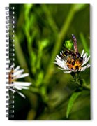 Party Flower 2 Spiral Notebook