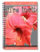 Party Invitation - Amaryllis Flowers Spiral Notebook