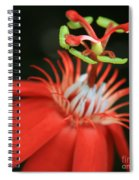 Passiflora Vitifolia - Scarlet Red Passion Flower Spiral Notebook