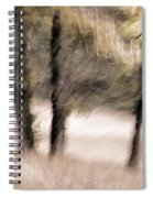 Passing By Trees Spiral Notebook