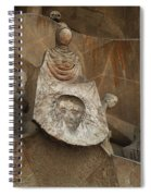 Passion Facade Spain Spiral Notebook