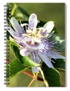 Passion Flower - May Pop Bloom Spiral Notebook