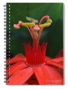 Passion Flower Crown Spiral Notebook