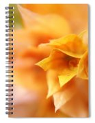 Passion For Flowers. Orange Delight Spiral Notebook