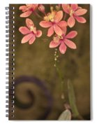 Passionate Pink Spiral Notebook