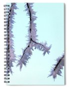 Pastel Glow On The Frost Spiral Notebook