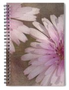 Pastel Pink Passion Spiral Notebook