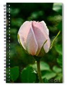 Pastel Rose Petals Spiral Notebook