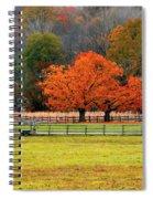 Pastoral Autumn Spiral Notebook