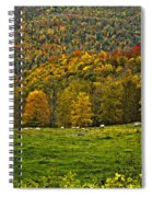 Pastoral Painted Spiral Notebook