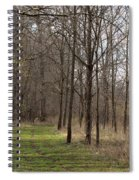 Path Of The Trees Spiral Notebook