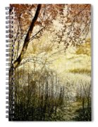 Path To The Meadow Spiral Notebook