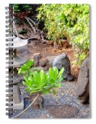 Path To The Waterfall Spiral Notebook