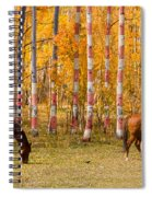 Patriotic Autumn Spiral Notebook