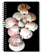Patterns And Sizes Spiral Notebook