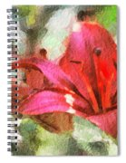 Patty's Perfect Lily Spiral Notebook