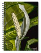 Peace Everyone Spiral Notebook
