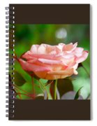 Peace Rose Spiral Notebook