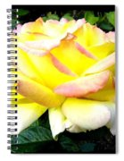 Peace Rose- Okanagan Valley Spiral Notebook