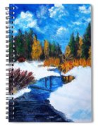 Peaceful Creek 2012 Spiral Notebook