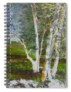 Peaceful Meadow Spiral Notebook
