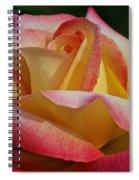 Peaceful Petals Spiral Notebook