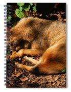 Peaceful Slumber Spiral Notebook