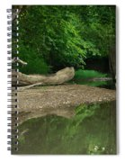 Peaceful Stream Spiral Notebook