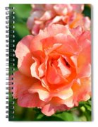 Peach And Yellow Ruffled Spiral Notebook