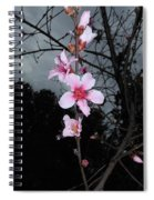 Peach Blooms Spiral Notebook