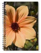Peach Flower Spiral Notebook