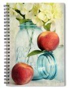 Peachy Spiral Notebook