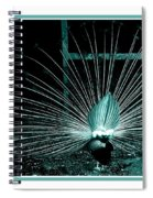 Peacock Blues Tail Spiral Notebook