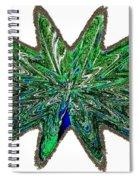 Peacock Burst Spiral Notebook