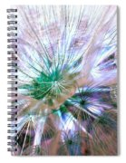 Peacock Dandelion - Macro Photography Spiral Notebook