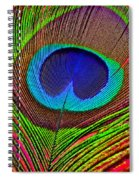 Peacock Feather Close Up Spiral Notebook